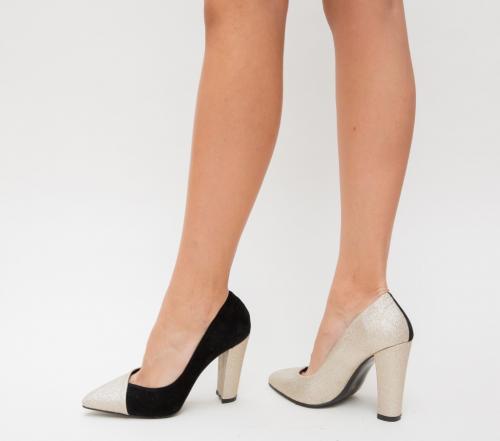 Pantofi Mikael Aurii - Pantofi eleganti - Pantofi cu toc gros